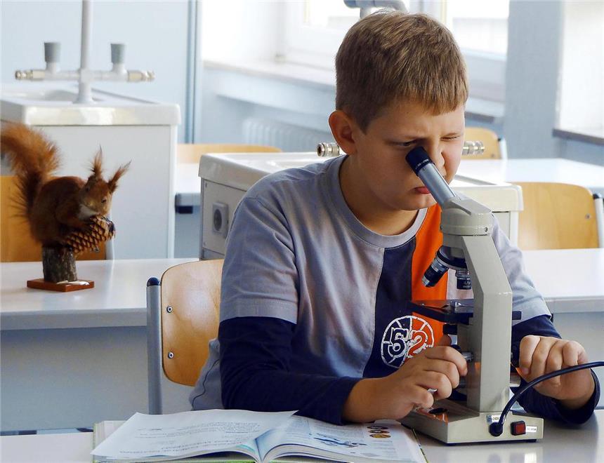 Kleine forscher entdecken die robert koch realschule