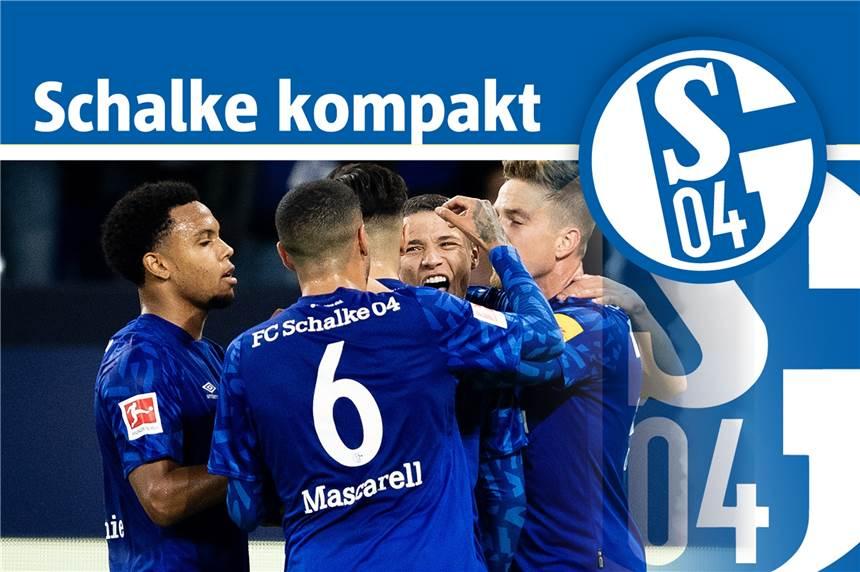 04 >> Schalke 04 News Alle Nachrichten Zum Fc Schalke 04 Rn