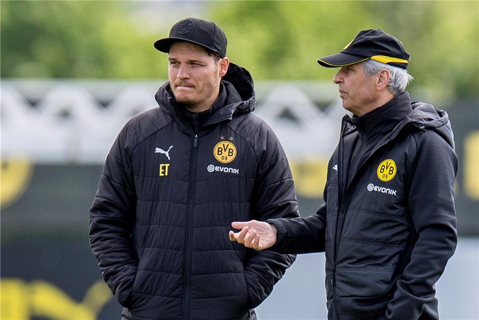 Co Trainer Dortmund