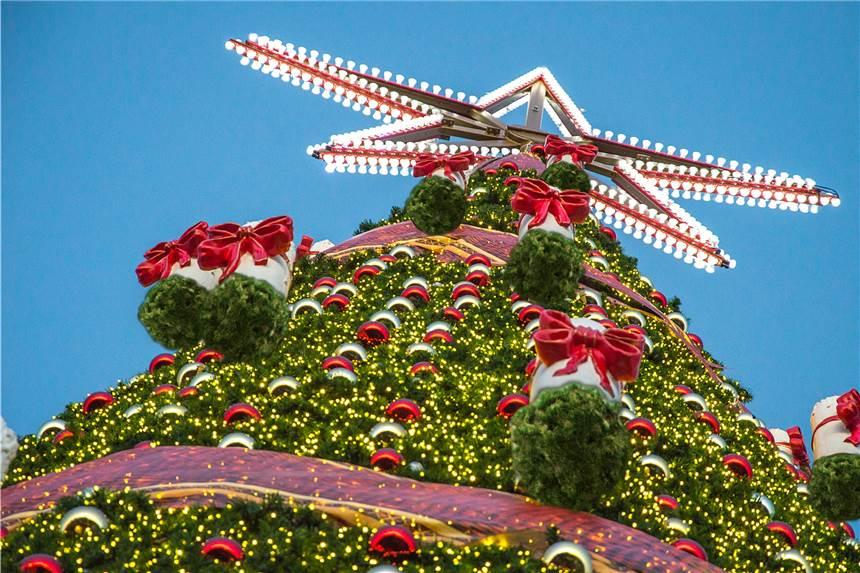 Bvb Weihnachtsbaum.Wer Hat Den Weltgrößten Baum