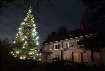Weihnachtsbaum Explodiert.Weihnachtsbaum