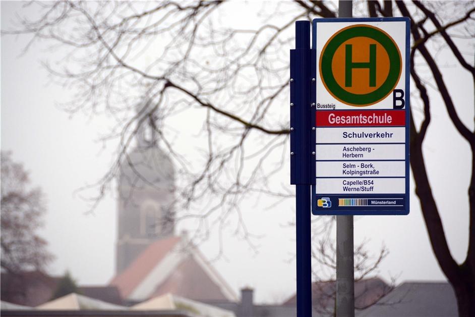 Warum günstige Bustickets alleine dem öffentlichen Nahverkehr in Nordkirchen eher schaden - Ruhr Nachrichten