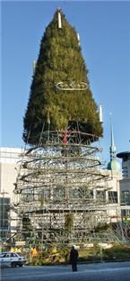 hansaplatz weihnachtsbaum abbau geht rasend voran. Black Bedroom Furniture Sets. Home Design Ideas