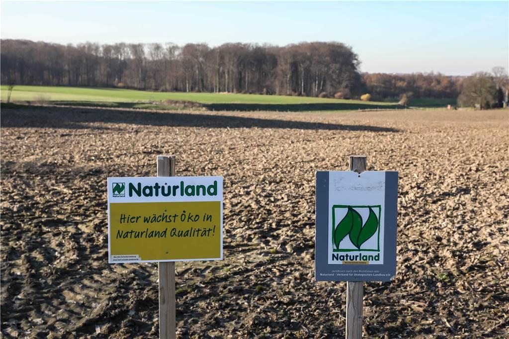 500 Jahre alter Hof wird ökologisch: Kemminghauser Landwirt setzt in Zukunft auf Bio